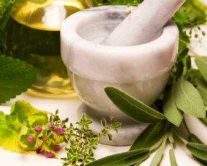 Collaborative Oncology - A Phytotherapy Perspective