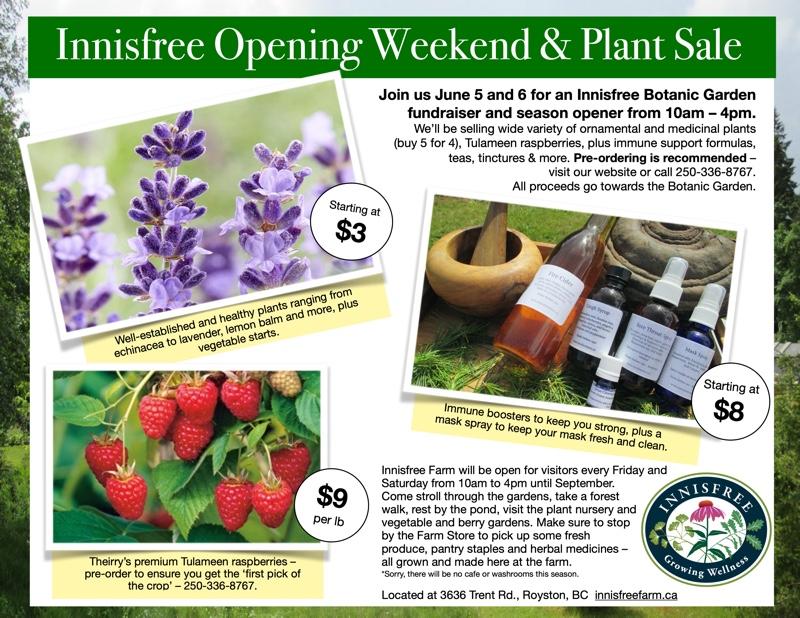 Innisfree Spring Sale